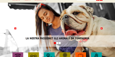 Purina-screen